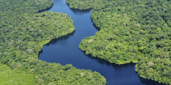 Citi becomes official signatory to the Natural Capital Declaration