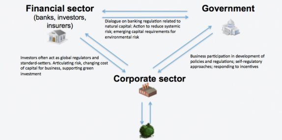 The three corners of natural capital accounting