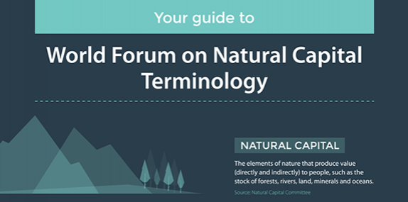 Your guide to World Forum on Natural Capital terminology