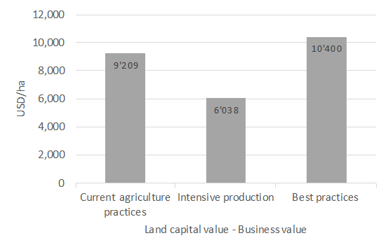 there is no sustainability without a balance sheet olam