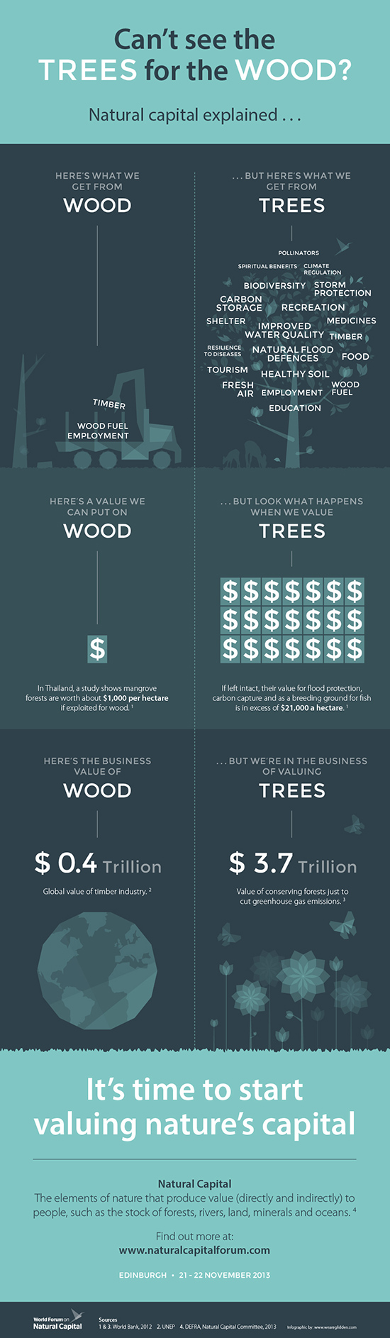 Can't see the TREES for the WOOD - Infographic